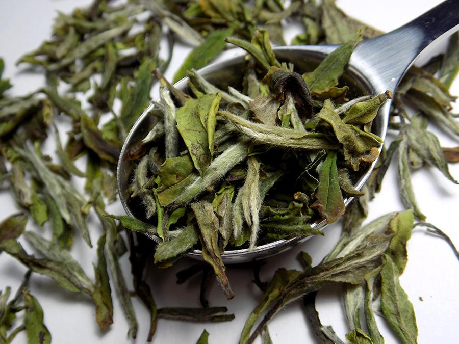 DavidsTea Royal White Peony Davids Tea Review