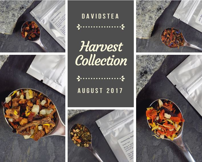 DAVIDsTEA Harvest Collection - Just Beet it - Honeycrisp Apple - Orange Glow - Wild Strawberry - Pear Blossom
